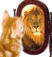 PostAdvies houdt u een spiegel voor