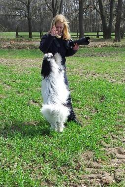bei meiner Hundetrainerin Angela Kraft gehorche ich immer.