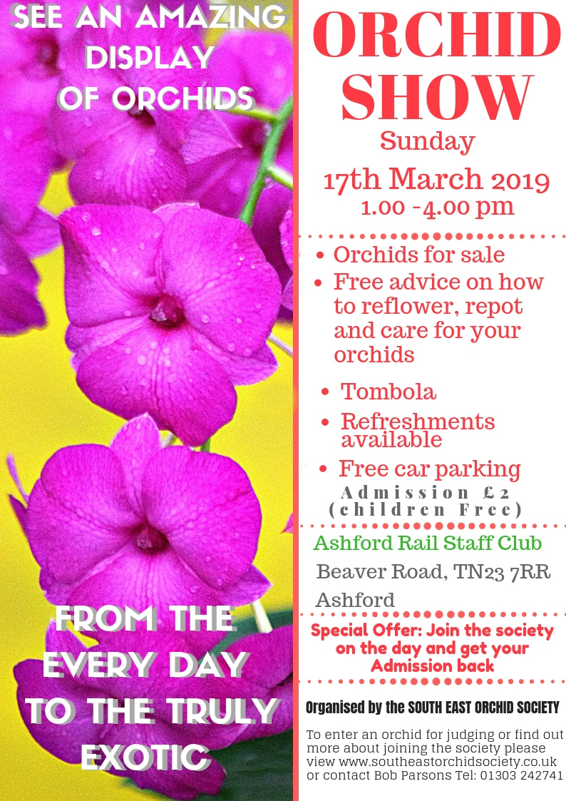Spring Show South East Orchid Society 2019