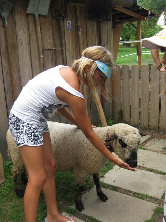 Schaf Mathilda kuscheln und füttern.