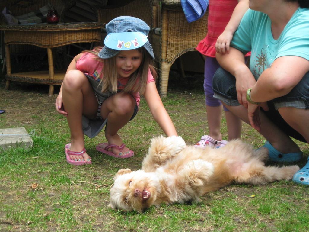 Ein Mädchen mit großer Hundeangst überwindet sich um stolz Nanouk zu streicheln!