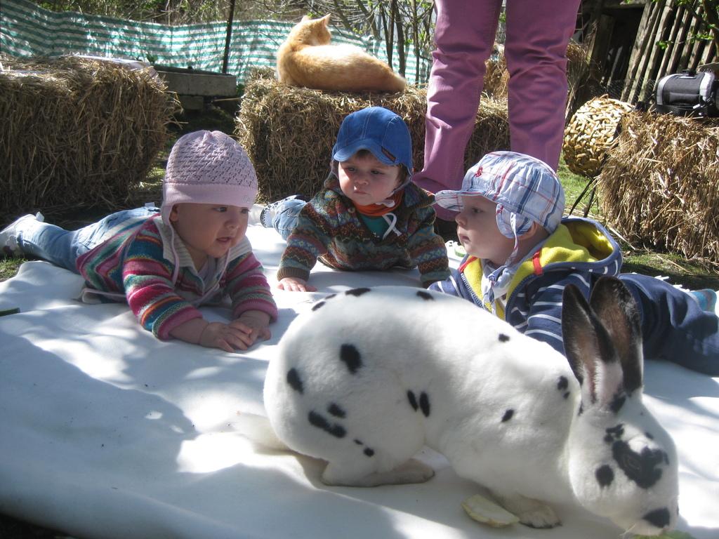 Baby-Talk mit Tieren! :-)