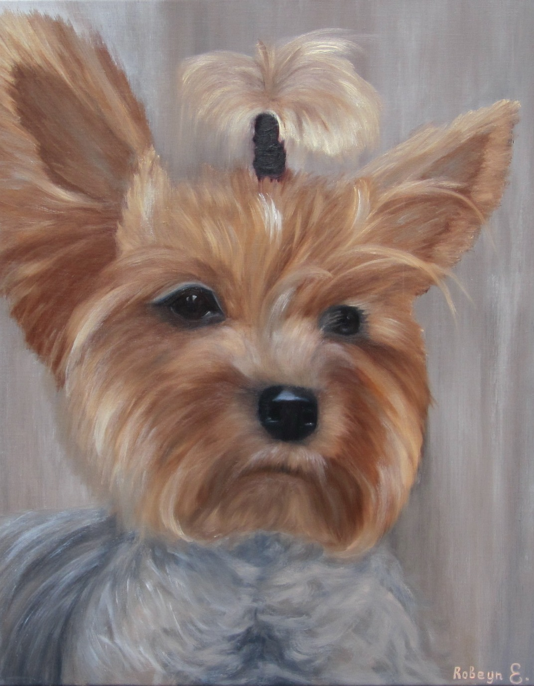 """Yorkshire Terrier""  - oil, canvas 50х40, 2017, Private collection"