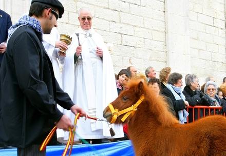 Fiestas en Benissa Fira i Porrat de San Antoni