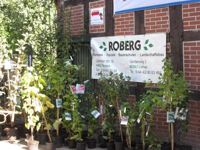 Roberg bietet hier Obstbäume und Beerensträucher an