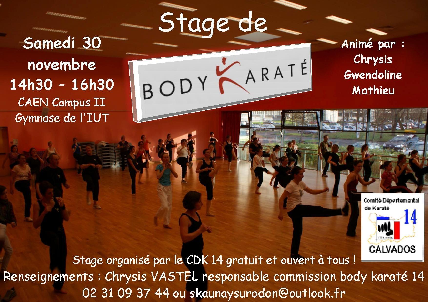 Stage à Caen (14)
