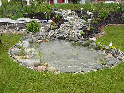 gartenteiche bieten lebensraum f r tiere und pflanzen schorno gartenbau pflege gmbh region baden. Black Bedroom Furniture Sets. Home Design Ideas