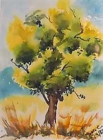Baum, Kalifornien, Aquarell auf Papier, 1983, Beatrice Ganz