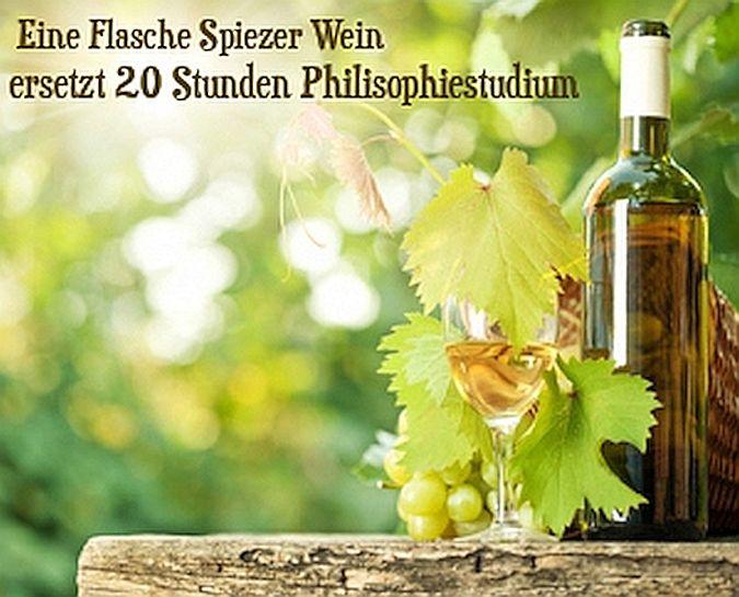 Eine Flasche Spiezer Wein, ersetzt 20 Stunden Philisophiestudium