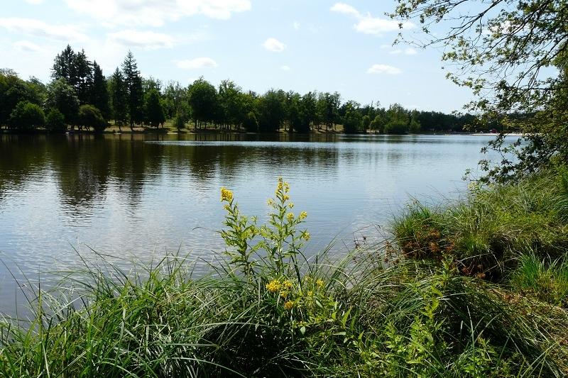 <h2>Le grand étang de Saint Estéphe</h2>
