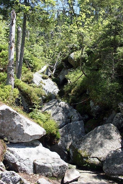 Nationalpark Bayerischer Wald (Foto Pöhlmann): Teufelsloch