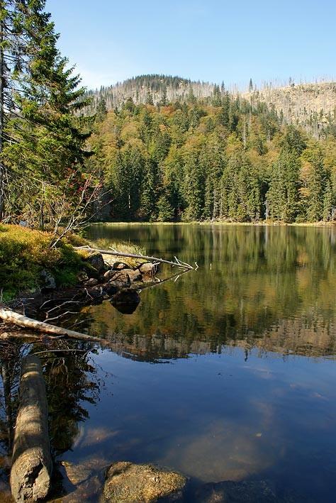 Nationalpark Bayerischer Wald (Foto Alice Alteneder): Rachelsee