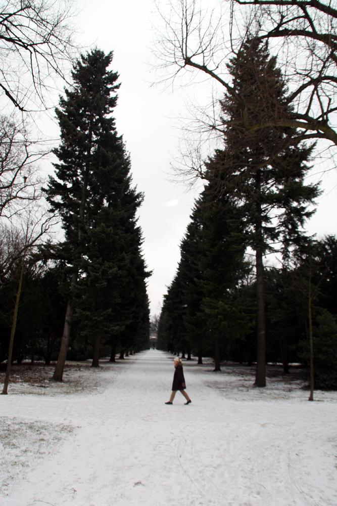 Baumallee zum Mausoleum im Winter im Schlossgarten Charlottenburg. Foto: Helga Karl Januar 2009