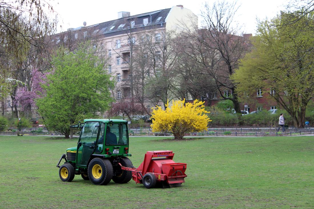 Volkspark Wilmersdorf im Frühling. Foto: Helga Karl
