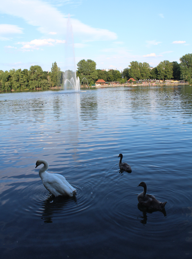 Weißer See in Pankow-Weissensee. Foto: Helga Karl