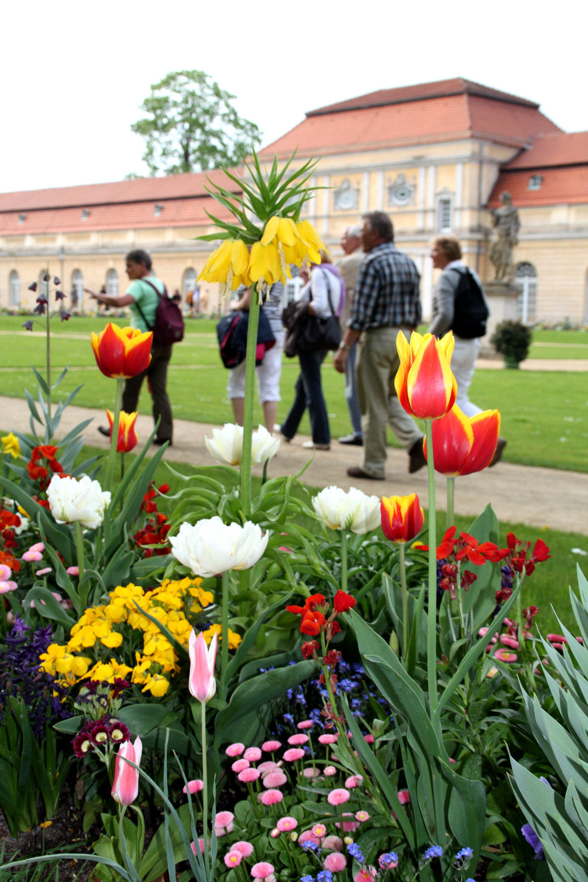 Frühlingsbepflanzung Schlossgarten Charlottenburg
