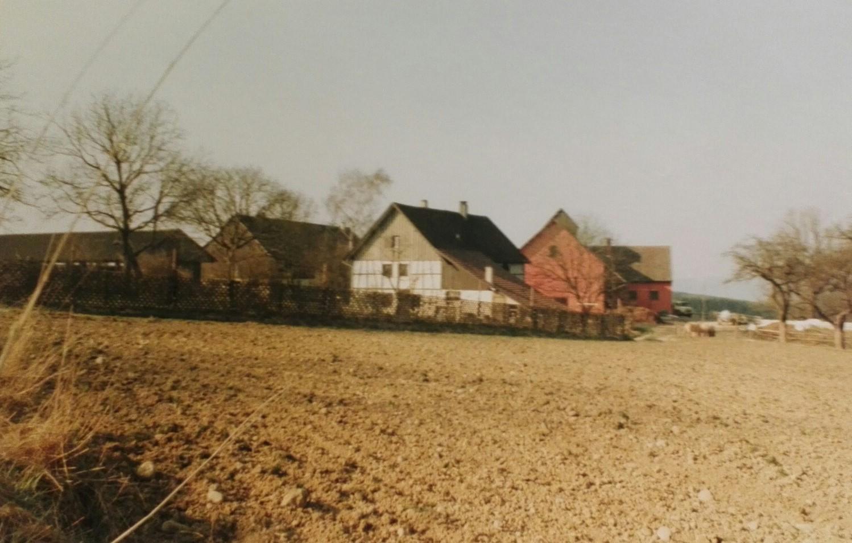 Hof (um 1990)