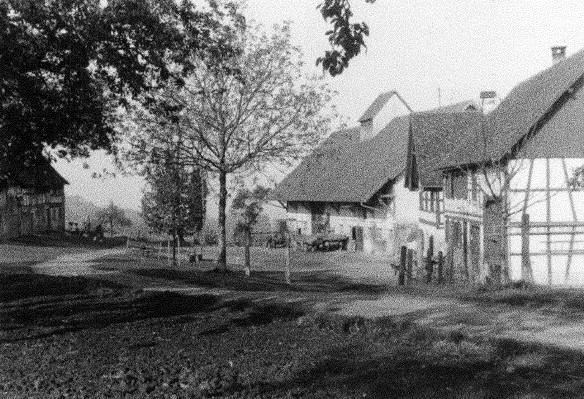 alle Hofgebäude (um 1948)