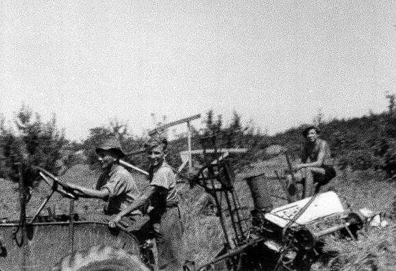 Traktorfahren war schon immer beliebt (um 1948)