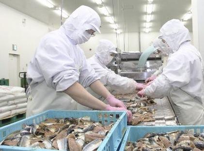海産物加工場でのご利用