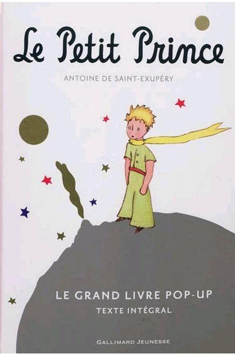 Projet Le Petit Prince - Fiches de préparations (cycle1