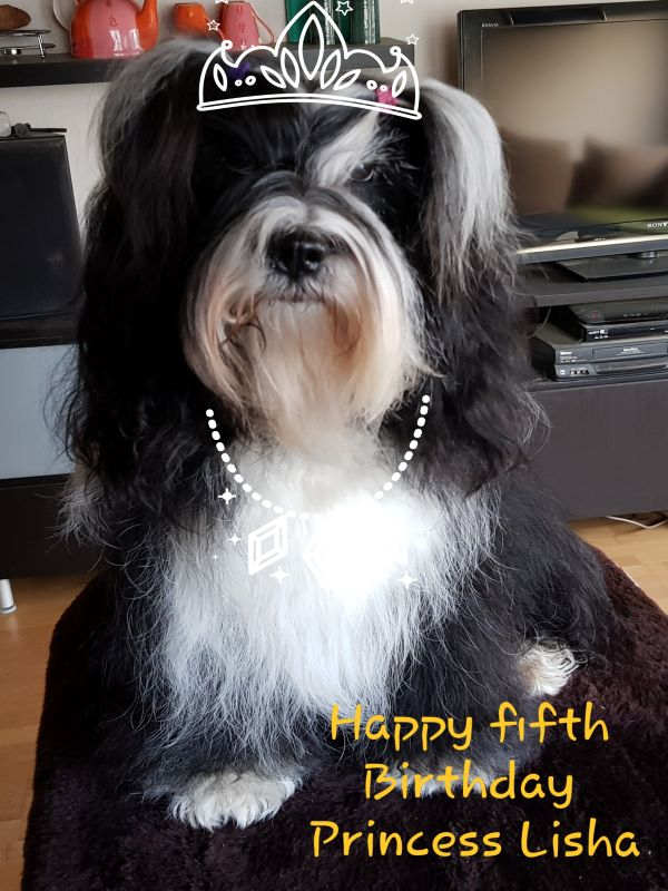 Happy Birthday Lisha!