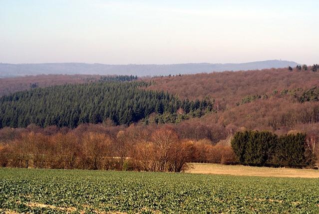 Landschaft im Hintertaunus