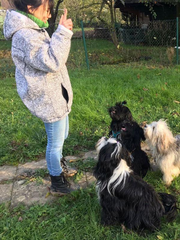 Isok, die Hundeflüstererin