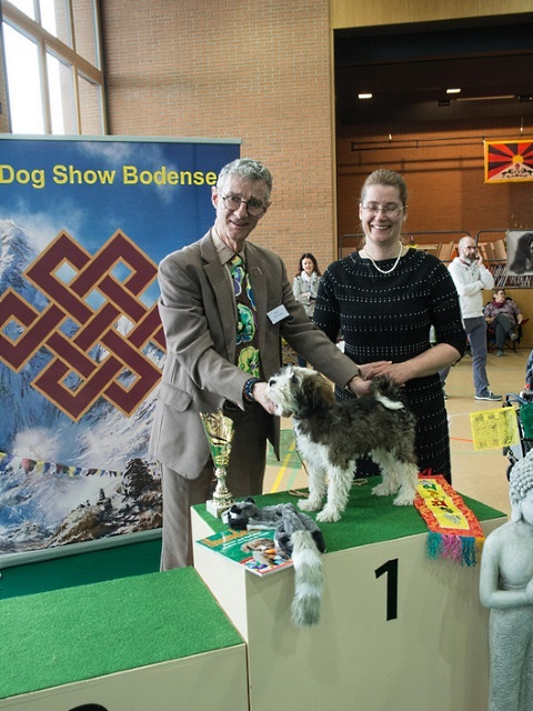 Tibet Dog Show Egnach/Ch  18 mit 15 Wo. in der Puppyklasse: Best in Show Puppy ♥