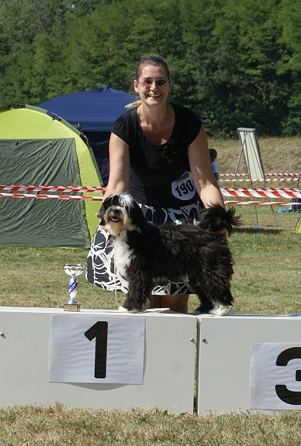 "Lisha war ""Best in Show Jüngstenklasse 2015"""