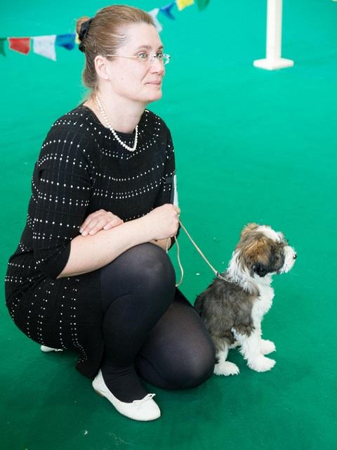 Tibet Dog Show Egnach/Ch 18 mit 15 Wo. in der Puppyklasse