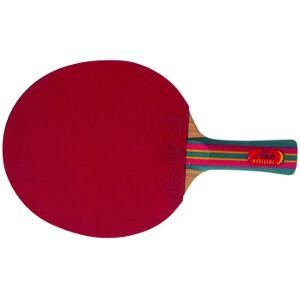 Raquette de tennis de table Stage, club et scolaire 5 plis