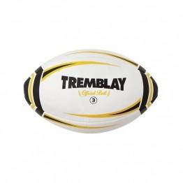 Ballons de rugby entraînement