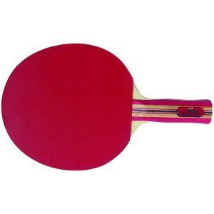 Raquette de tennis de table Tournois pour apprendre le tennis de table aux enfants.