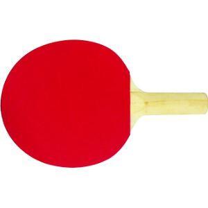 Raquette de tennis de table club à acheter pas cher.