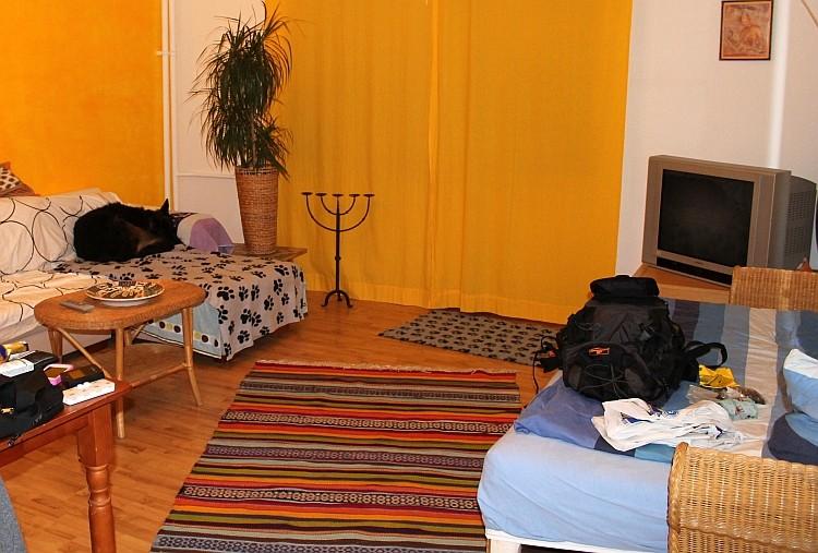 ...das Wohnzimmer, linke Seite (mit Hund)...