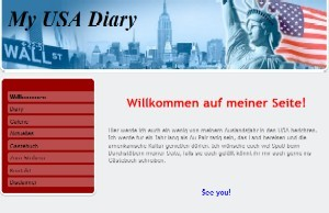 My USA Diary (v. Vivi)