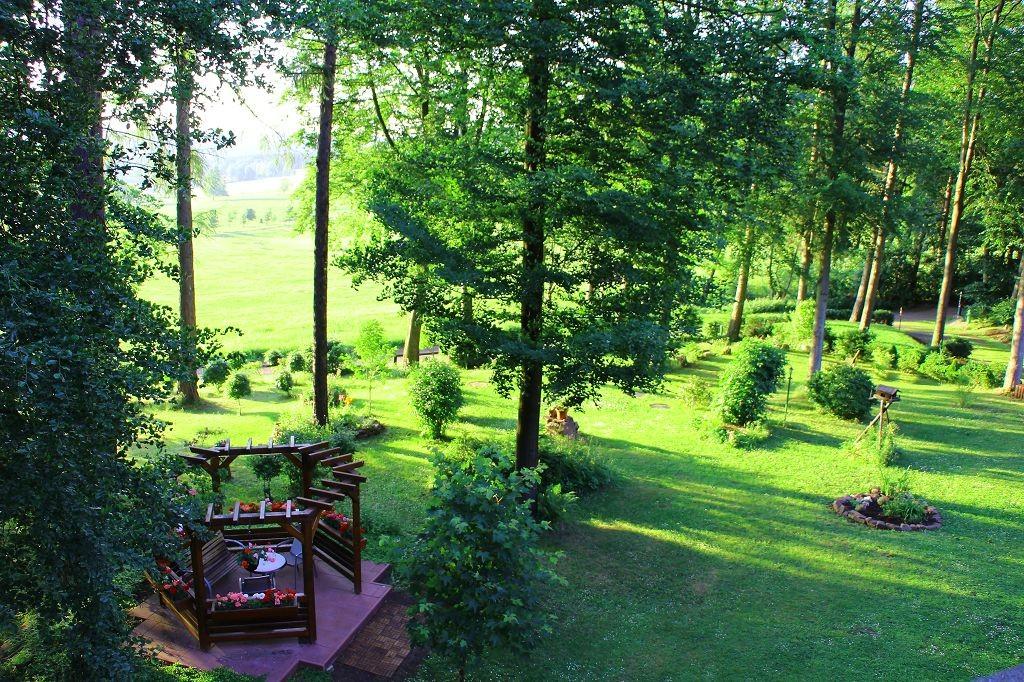 Blick vom Haus in den Waldgarten