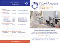 Brochure ECELLFRANCE