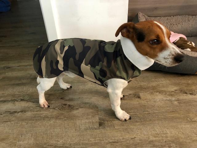Hundemantel Maßanfertigung / Custom/bespoke dog coat, Hundemantel Maßanfertigung, Hundemantel nach Maß