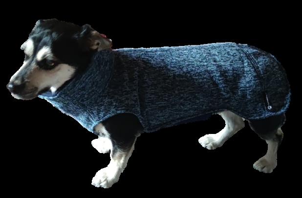 Hundepullover Maßanfertigung