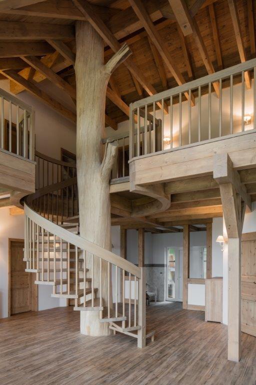 objekt baumtreppe treppenstudio karlsruhe. Black Bedroom Furniture Sets. Home Design Ideas