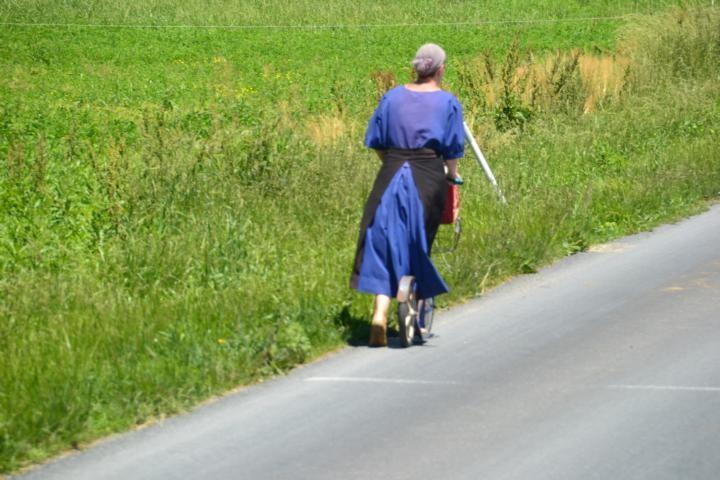 Fortbewegung auf Amish so...