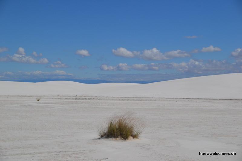 Schnee oder Sand???