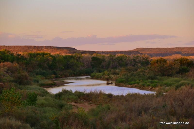 Der kümmerliche Rest des berühmten Rio Grande