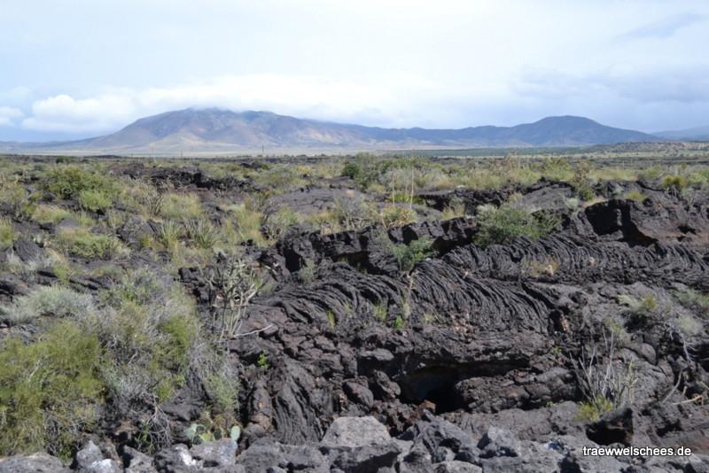 Erstarrte Lava im Valley of Fires