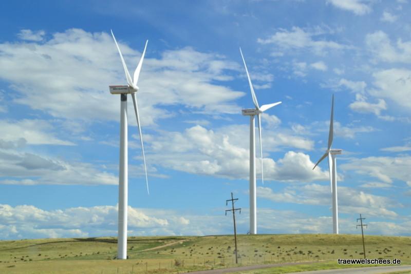 Einer der wenigen Windparks, die wir bisher gesehen haben