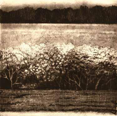 """Valérie LOISEAU """"Floraison de lumière"""" Pointe sèche et aquatinte - 20 x 20 cm"""