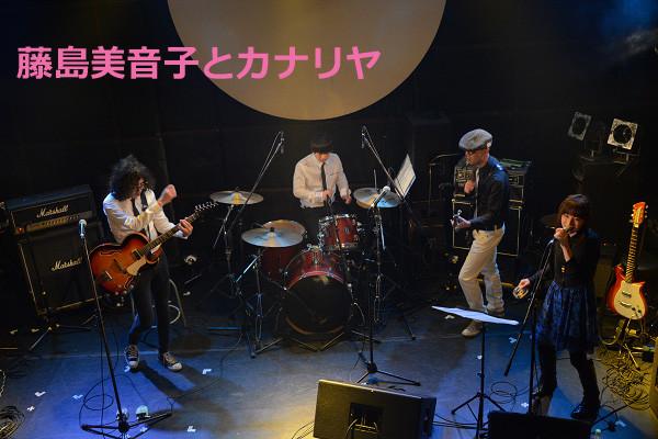 藤島美音子とカナリヤ