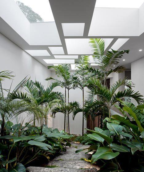 Patio transformé en jardin d'intérieur